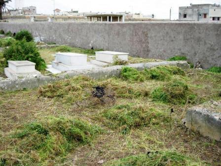 maroc mazagan avril 2010 (40).JPG